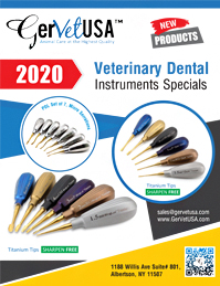 2020 Veterinary Dental Instruments Specials