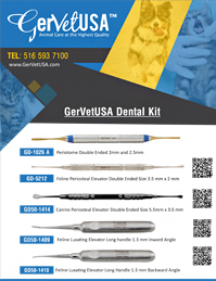 GerVetUSA Dental Kit